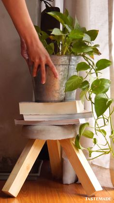Plant Stand Discover 4 DIYs Using Concrete From a clock to a stool heres how you can use concrete to get crafty. Diy Crafts For Home Decor, Diy Crafts Hacks, Diy Arts And Crafts, Diy Craft Projects, Concrete Crafts, Concrete Projects, Concrete Furniture, Diy Furniture, Concrete Interiors