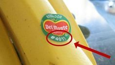 Si vous voyez ce label sur un fruit, ne l'acheter surtout pas !