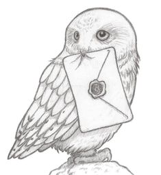Find the desired and make your own gallery using pin. Barn Owl clipart harry potter owl - pin to your gallery. Explore what was found for the barn owl clipart harry potter owl Hedwig Harry Potter, Harry Potter Fan Art, Harry Potter Sketch, Harry Potter Drawings, Harry Potter Tattoos, Harry Potter Painting, Harry Potter Images, Cool Art Drawings, Art Drawings Sketches