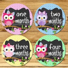 Baby Girl Monthly Owl stickers Baby month stickers chalk Month baby sticker Months 1-12 stickers Owl Month photo stickers chalkboard on Etsy, $8.99