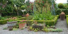 Huson garden, boxwood squares