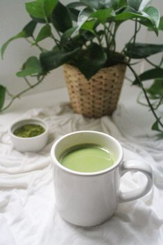 Drink your greens with this simple non-dairy Oat Milk Matcha Latte recipe. Made with creamy plant-based milk instead of cow milk, it's vegan and dairy free and packed with antioxidants from ground green tea leaves. Recipe by The Baker's Almanac. Matcha Chia Pudding, Matcha Latte Recipe, Green Tea Latte, Green Tea With Milk, Matcha Tea Powder, Matcha Benefits, Plant Based Milk, Matcha Green Tea, Green Teas