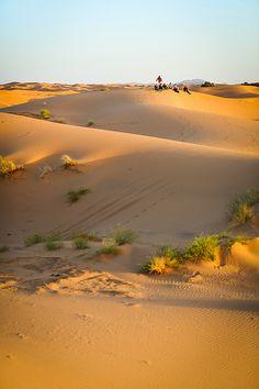 photographer desert countries morocco merzouga hassilabied southernmorocco meknestafilalet photomortenfalchsortland