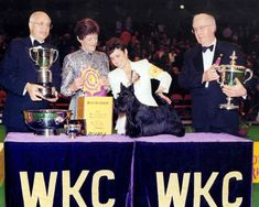 1995 BIS Winner of the Westminster Kennel Club Dog Show - Ch Gaelforce Post Script, Scottish Terrier All photos are from the AKC Archives. Official Westminster photographers through the years