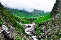 Vallée des fleurs, Uttaranchal (Inde)