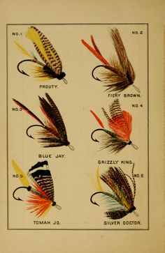 Illustrations of fishing flies taken from 'Fly-fishing in Maine Lakes' by Charles W. Published 1881 by A. Williams & Co. The Library of Congress Fly Fishing Lures, Gone Fishing, Trout Fishing, Fishing Stuff, Net Making, Salmon Flies, Fish Drawings, Fly Shop, Fly Tying Patterns
