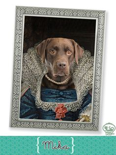 dog Mika ♥ (www.pimppet.com)