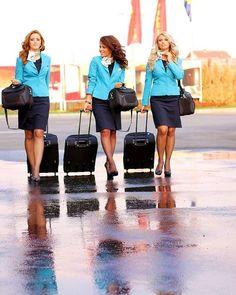 fly attendants
