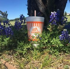 Looooove me some whataburger!