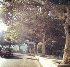Alexandria, Egypt Alexandria Egypt, Outdoor, Beautiful, Outdoors, Outdoor Games, Alexandria