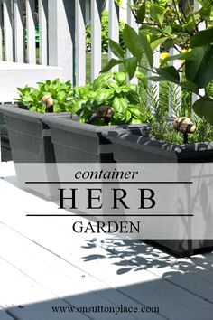 ~Ideas for planting a Container Herb Garden and tips for using the herbs in your kitchen~