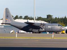 RNZAF Hercules at Christchurch  Type: Lockheed C-130H Hercules Registration: NZ7004 Location: Christchurch International Airport Date: 30/10/2012 Note: Adorned with RNZAF 75th Anniversary markings