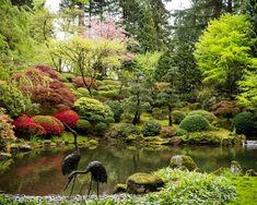Japanese Garden in Portland, Oregon The Element… Japanese Garden Plants, Japanese Garden Design, Japanese Landscape, Japanese Gardens, Auckland, Weekend In Portland, Portland Oregon, Organic Gardening, Gardening Tips