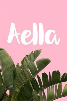 Aella I Cool & Unique Baby Names for Girls I Nameille.com
