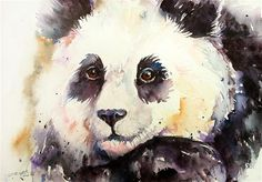 Cute Panda Art by Arti Chauhan Watercolor Original Art Painting Wall Art Watercolor Animals, Watercolor Art, Original Paintings, Original Art, Panda Art, Cute Animal Drawings Kawaii, Cute Panda, Fine Art Gallery, Painting & Drawing