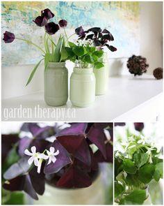 painted mason jars as planters