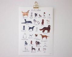 An A-Z of Dogs unframed print