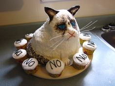 Grumpy cat Birthday cake #GrumpyCat #cake For more Grumpy Cat quote, humor and meme visit www.pinterest.com/erikakaisersot