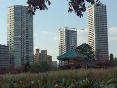 上野公園と飛行船、多分ツェッペリンnt