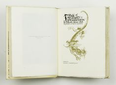 Poe's Tales of Mystery and Imagination, Edgar Allen Poe, Illustrated by Arthur Rackham, First Rackham Edition, Signed by Rackham