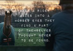 Horse and Rider. #horseware #rugsforlife