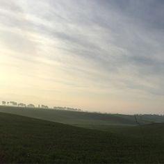 Sveglia alle 5:20: pensieri vari 12 km e pronto per questa giornata che sarà determinante #running #correre #daje #roadtomaratonadiroma #primavera #albarunner #irunrome #marathontraining #runlovers : @rinzi