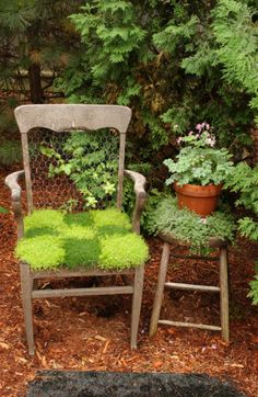 old chair with moss seat and chicken wire back..too cute!
