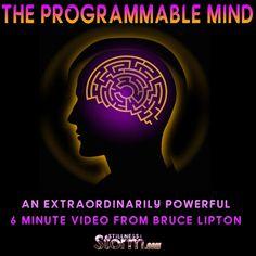 The Programmable Mind - An Extraordinarily Powerful 6 Minute Video from Bruce Lipton | Stillness in the Storm - 3/25/2016 - #MIND #PROGRAMING #TOOLS #MECHANICS #BRUCELIPTON #BIOLOGYOFBELIEF #CONSCIOUSNESS #EMPOWERMENT #SITS #STILLNESSINTHESTORM  Long Link: http://sitsshow.blogspot.com/2016/03/The-Programmable-Mind-An-Extraordinarily-Powerful-6-Minute-Video-from-Bruce-Lipton.html