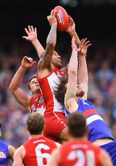 Lance Franklin of the Swans marks during the 2016 AFL Grand Final match between the Sydney Swans and the Western Bulldogs at Melbourne Cricket Ground. Western Bulldogs, Rugby Players, Pro Cycling, Action Poses, World Of Sports, Swan, Finals, Melbourne, Coaching