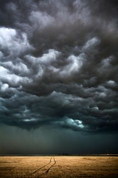 Would like to paint these storm clouds on the ceiling in a dark blue bedroom.