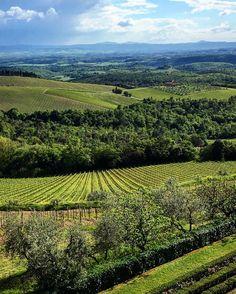 La natura spesso sa regalarci momenti unici.... __________________    #ig_italia #ig_siena_ #ig_toscana #volgoitalia #volgosiena #ig_siena #ig_italy #loves_united_toscana #loves_hdr #loves_united_italia #perlestradedellatoscana #landscape #colorful #view #vineyards #winecountry #country #nature #green #tuscany #toscana #tuscanybuzz #photooftheday #photographer #ig_captures #ig_europe #igerstoscana #igersitalia #ig_firenze_ #toscana_amoremio by barbarellaviola
