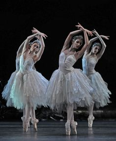Swans - Yasmine Naghdi, Francesca Hayward (Olivia Cowley) | by DanceTabs