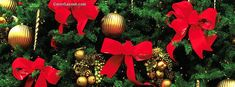 Christmas Tree Red Bowes and Ornaments Facebook Cover CoverLayout.com