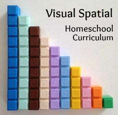 Homeschool curriculum for Visual Spatial learners.