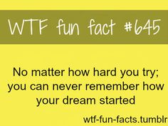 WTF-fun-facts : funny & weird facts , you want to bet that I have 8 dreams every night n recall every single one . Wow Facts, Wtf Fun Facts, True Facts, Crazy Facts, Random Facts, Dream Facts, Wierd Facts, The More You Know, Good To Know