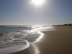 Sandbridge Beach on a gorgeous day!