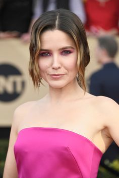Sophia Bush Loose Ponytail - Sophia Bush attended the SAG Awards wearing her hair in a loose, low ponytail with wavy tendrils hanging down both sides of her face.