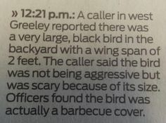 This person who shouldn't be trusted to be allowed near birds. Or barbecues. | 27 British People Who Must Be Stopped