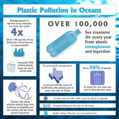 Why plastic pollution is harmful to marine wildlife! Some interesting and frightening facts in an easy to read infographic