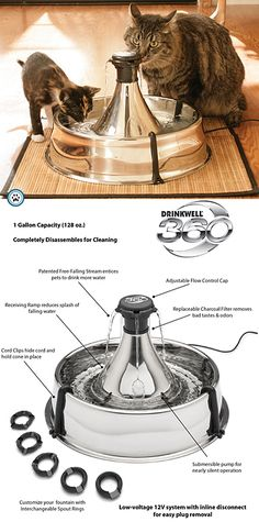Drinkwell 360 Stainless Steel Pet Fountain - Puutty Power!
