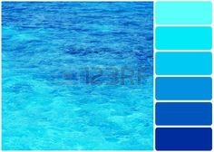clear palette: Clear ocean water and palette of colors