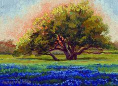 Sunset with Bluebonnets by Nancy Paris Pruden  ~  x