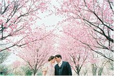 All About Wedding: Cherry Blossom Wedding Theme Ideas