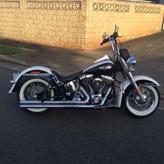 American Chopper, Harley Softail, Old Motorcycles, Custom Harleys, Harley Davidson Motorcycles, Motorbikes, Old School, Christian Kane, Bike Ideas