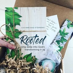 Rooted is here!! Im looking forward to diving into this study through Ephesians by my dear friend Lara Williams.  She is a solid Bible teacher and a gifted communicator. This book arrives officially on Monday and there are pre-order goodies!!! Catch the details on her profile!