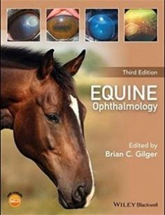 Equine Ophthalmology free download by Brian C. Gilger ISBN: 9781119047742 with BooksBob. Fast and free eBooks download.  The post Equine Ophthalmology Free Download appeared first on Booksbob.com.