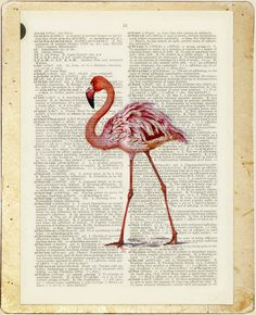 pink flamingo printed on page from old dictionary