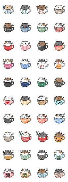 CATS IN MUGS!