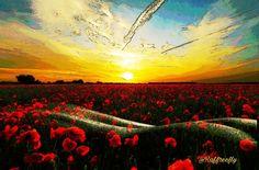 I'm nature  by ramoruso3Raffreefly