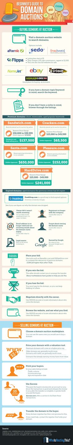 A Beginner's Guide to Domain Auctions   #Infographic #Domain #Hosting